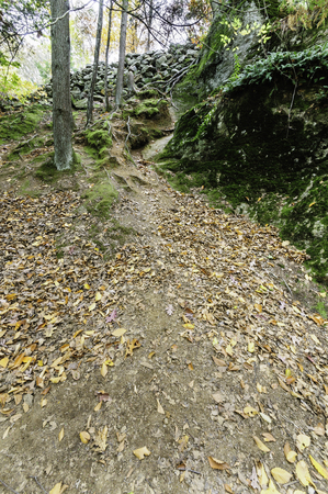 runoff: Dry spell on course for water runoff down steep hillside