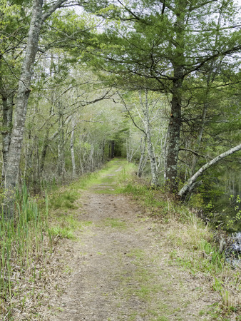 Path along pond in Washburn Park in Marion, Massachusetts Stock Photo