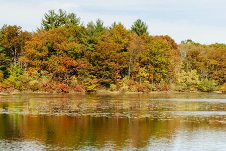 濾過池に州立公園で国境沿いの紅葉