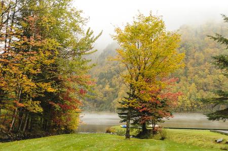 gloriette: Fall foliage at Lake Gloriette on misty morning Stock Photo