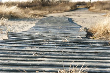 Wooden boardwalk across marshy area on West Island