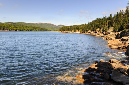 Placid morning at Otter Cove in Acadia National Park