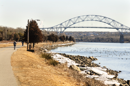 Bright winter morning along Cape Cod Canal with ice and Common Eider