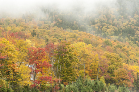 Low clouds drifting past colorful New Hampshire foliage