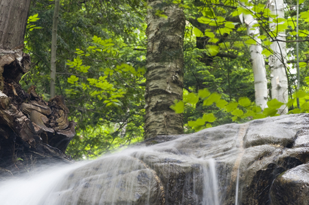 Water sheeting off rocks with birches in background Stock Photo