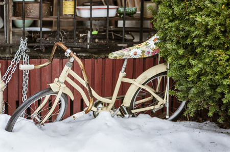Old bike with flowery seat waiting out the winter