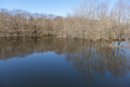Quiet eddy reflecting leafless trees along Blackstone River Greenway