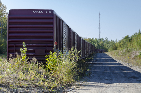 Millinocket, Maine, USA - September 27, 2011: String of boxcars on siding near Millinocket, Maine