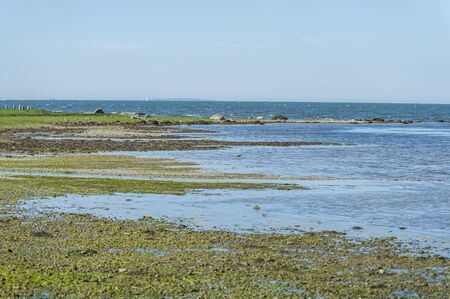 Stretch of rocky beach at low tide along Buzzards Bay shoreline