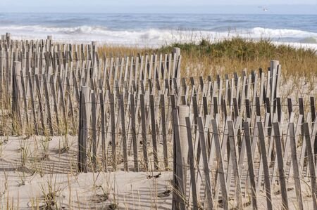 Nauset Beach surf breaking beyond zigzagging erosion fence on sand dune