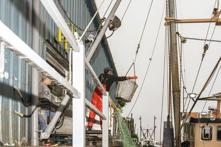 New Bedford, Massachusetts, USA - August 27, 2019: Men unloading commercial fishing boat Hustler at processing plant on New Bedford waterfront Redakční