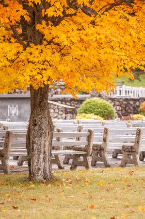 Colebrook, New Hampshire, USA - September 30, 2009: Empty benches on autumn morning at the Shrine of our Lady of Grace