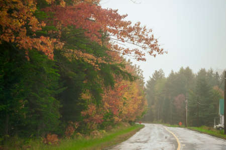 Country road curving left on rainy autumn day in northern New Hampshire Reklamní fotografie