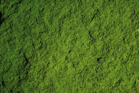 Grunge Texture Roc - Background HD Photo - Green Granit Roc Concept