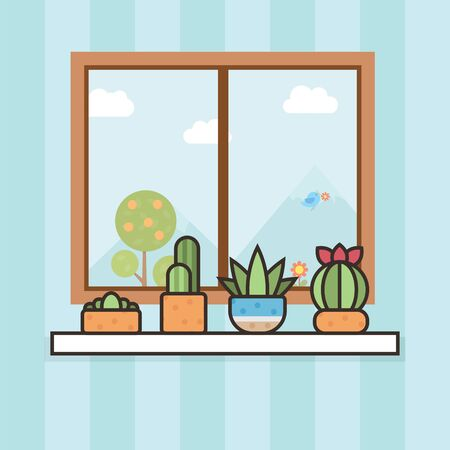 House plant cactus indoor behind the window