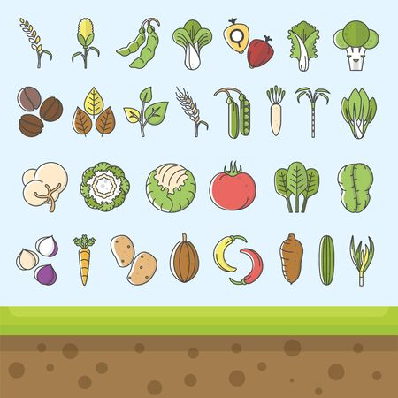 Vegetable and commodity icon with outline style