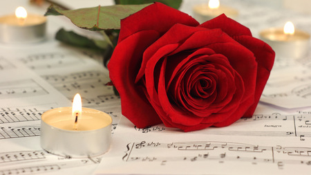 musical score: Red rose with candles and sheet music.