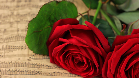 Two red roses and vintage sheet music Stock Photo