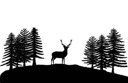 Eenzame herten silhouet onder sparren geïsoleerd op wit
