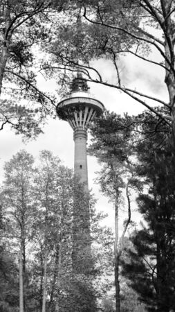 Tallinn Teletorn Tower Behind Trees in Black and White