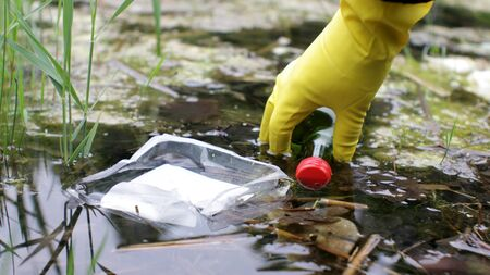 Hand of Volunteer in Gloves Collecting Junk from Contaminated Pond Water