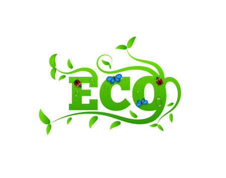 Eco Letters with Leaves and Insects. Green lifestyle concept vector art. 向量圖像