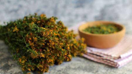 Hypericum Wild Herb for Tea and Medicine
