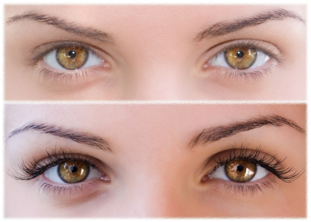Beautiful eyes with natural eyelashes to and false eyelashes after photo