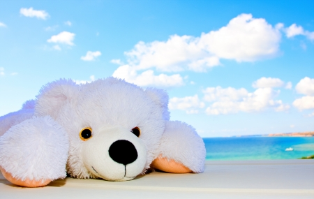 Toy polar bear in the background of a beautiful sky with clouds Standard-Bild