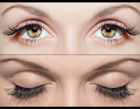 Fermez Beaux yeux avec des cils naturels à faux cils et après Banque d'images - 18954724