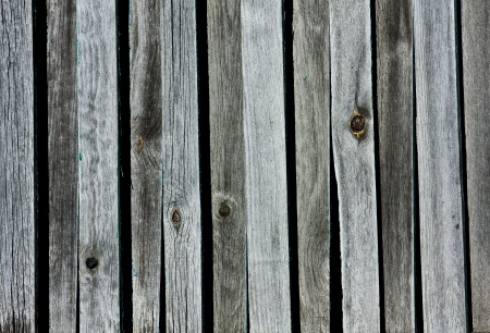 Texture of dirty Grunge wooden log care photo