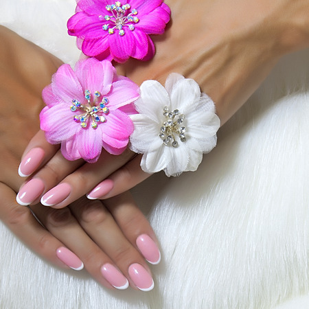 French manicure nails and chamomile flowers