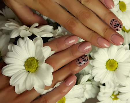 acryle: Female hands, nails manicure  and chamomile flowers