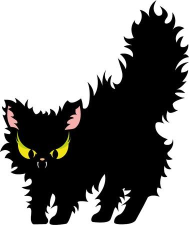 alarmed: feisty cat Illustration