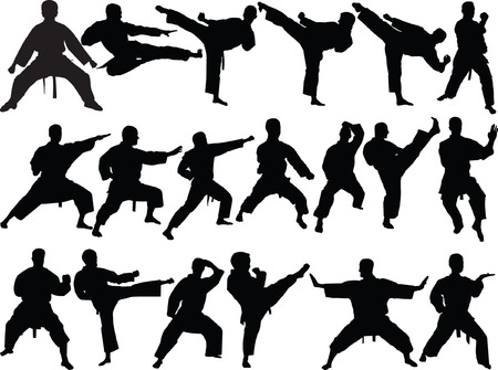 big collection of karate - vector