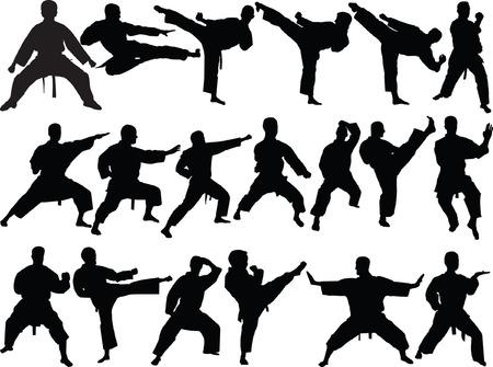 big collection of karate - vector Vetores