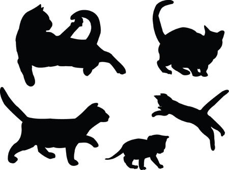 cat collection - vector Stock Vector - 5073420