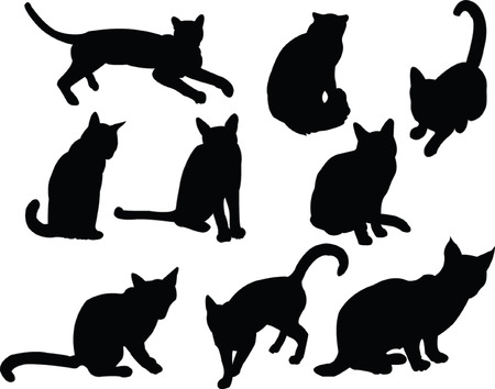 companions: cats silhouette collection - vector Illustration