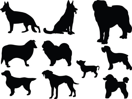 dog run: dogs silhouette collection - vector