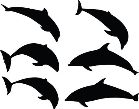 dolphin silhouette collection - vector Vector