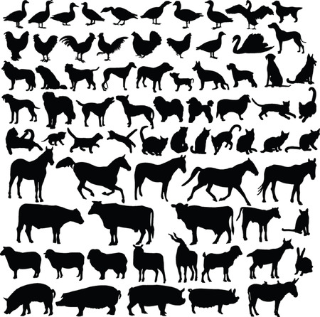 poultry animals: farm animals silhouette collection - vector