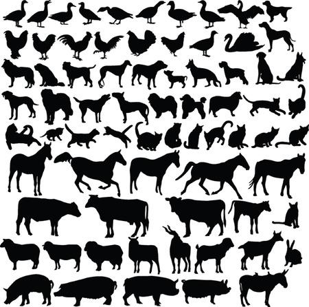 farm animals silhouette collection - vector