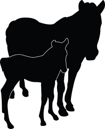 western saddle: horse with silhouette - vector
