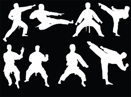 sidekick: karate collection 3 - vector