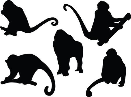 silueta mono: mono silueta - vector Vectores