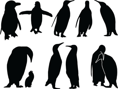 floe: penguins silhouette collection - vector Illustration