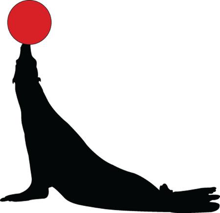 seal with ball - vector Vector