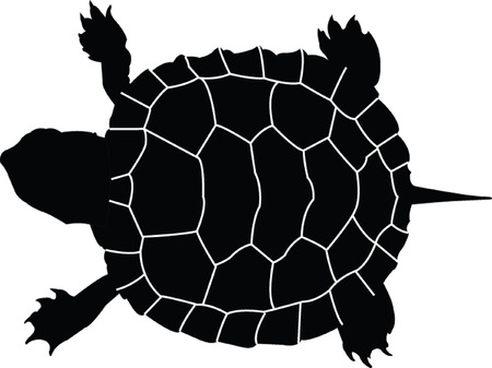 turtle:  turtle silhouette - vector Illustration