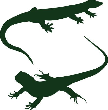 com escamas: two lizard - vector Ilustra��o