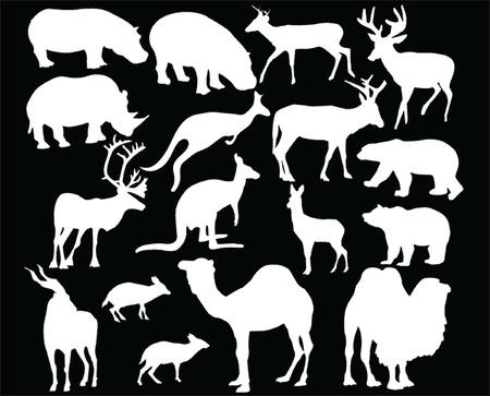 wild animal - vector Vector